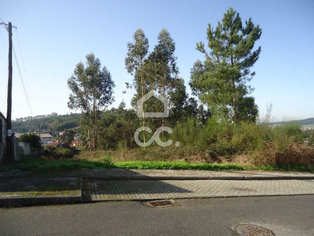 Brufe Vila Nova De Famalicão terrain picture 74829