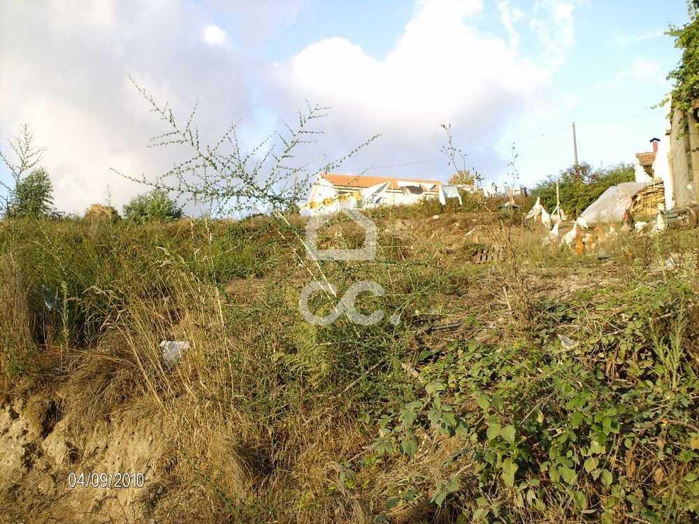 Casais Lousada terrain picture 77811