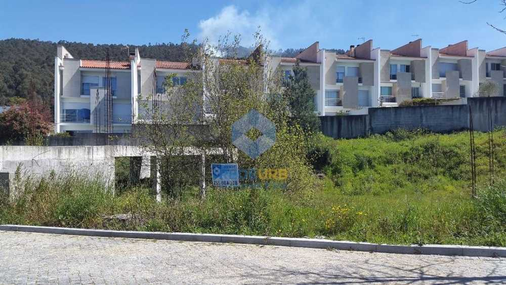 Nogueira Bragança terrain picture 68678