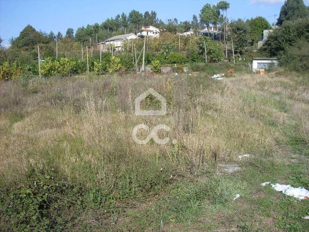 Gémeos Guimarães terrain picture 77458