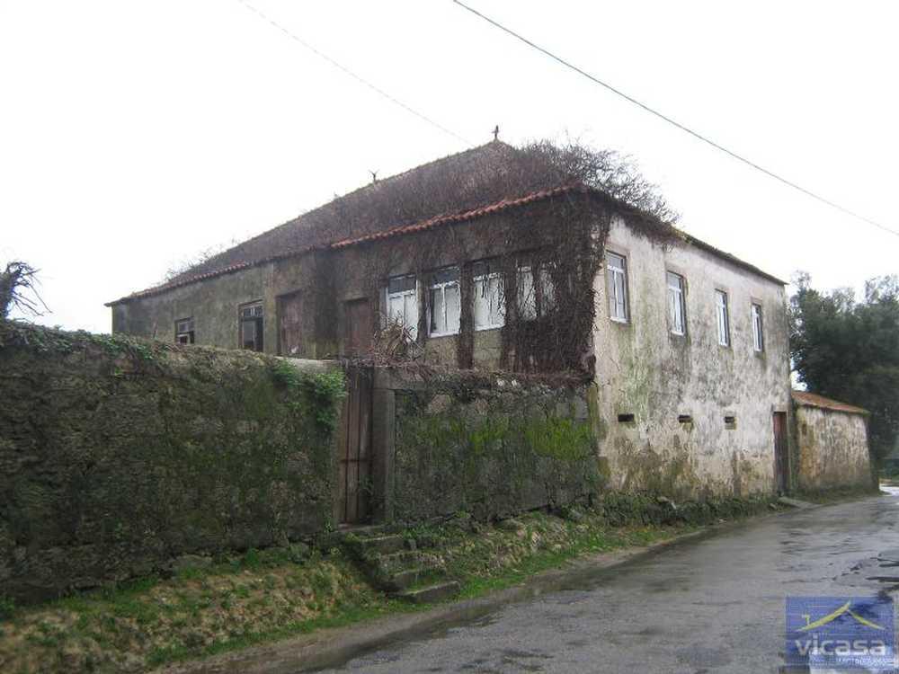 Deocriste Viana Do Castelo house picture 58292