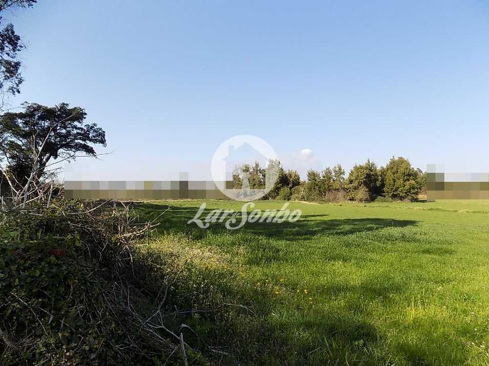 Retorta Vila Do Conde terrain picture 57008