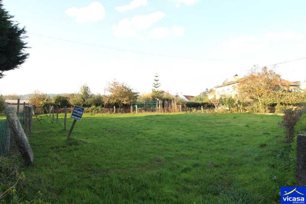 Argela Caminha terrain picture 58578