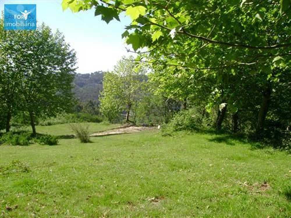 Serzedelo Póvoa De Lanhoso terrain picture 58129