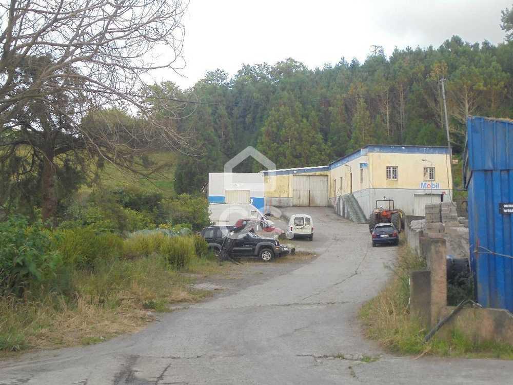Lomba da Maia Ribeira Grande house picture 78984