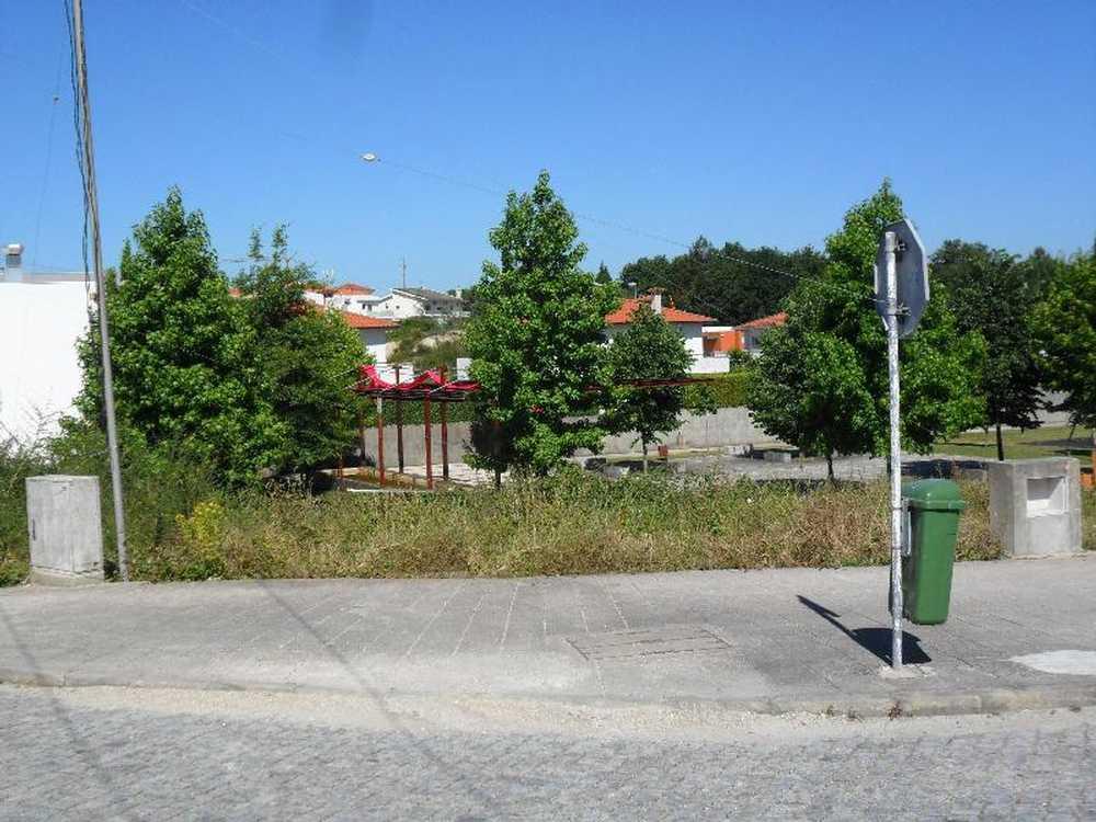 Brito Guimarães terrain picture 57268