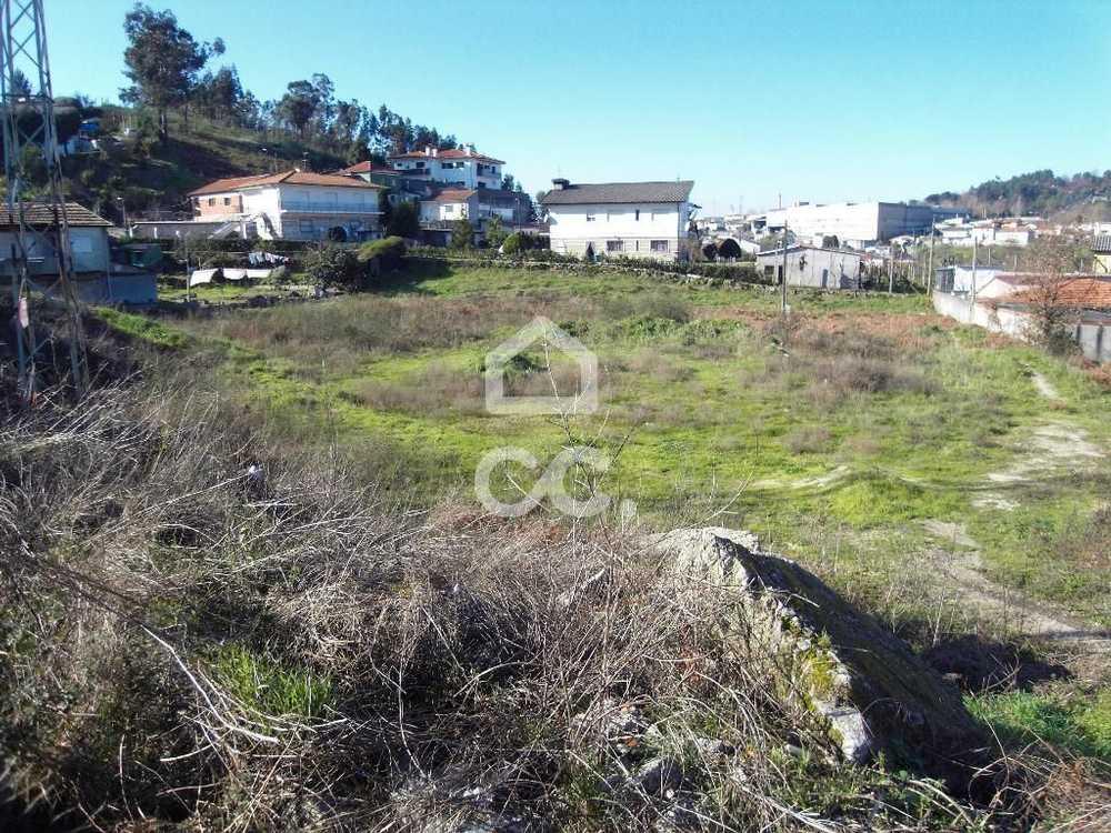 Moreira de Cónegos Guimarães terrain picture 77468