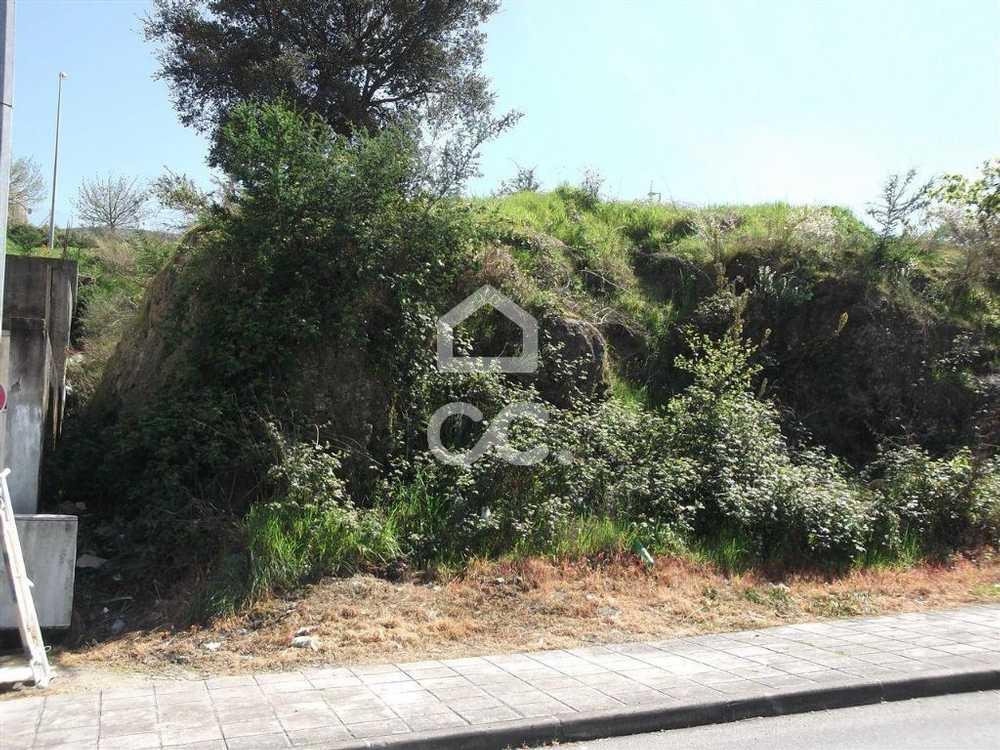 Guimarães Guimarães terrain picture 77473