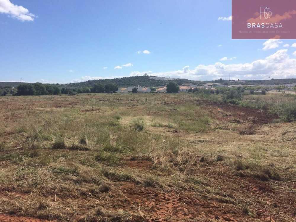 Rabaçal Penela terrain photo 76880