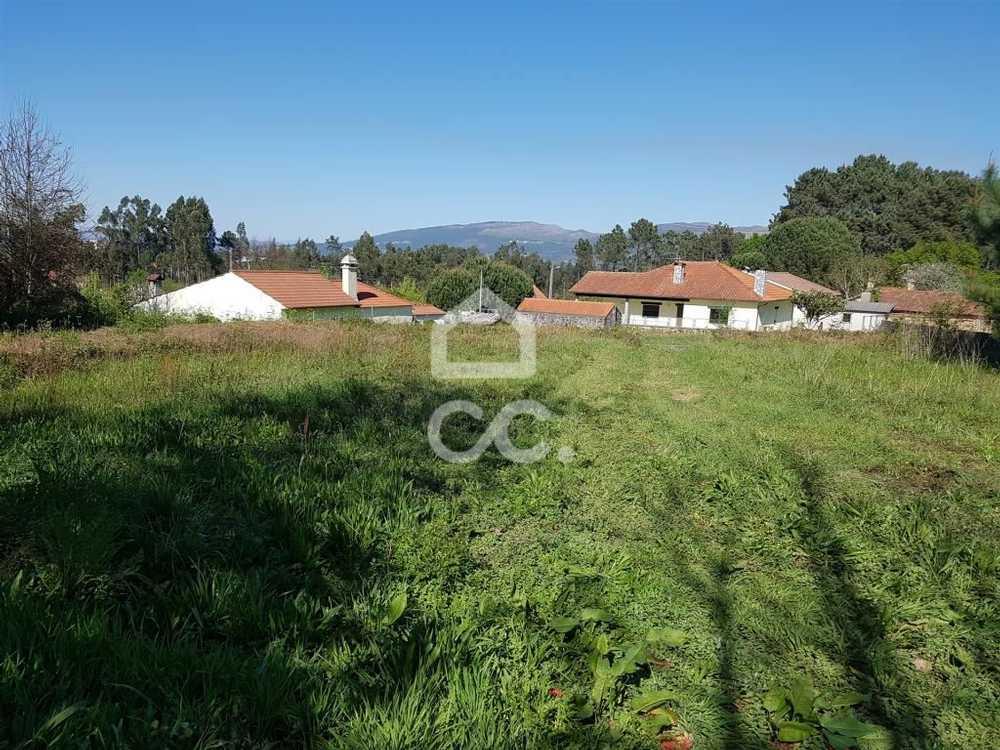 Silva Valença terrain picture 79611