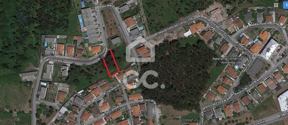 Brufe Vila Nova De Famalicão terrain picture 74828