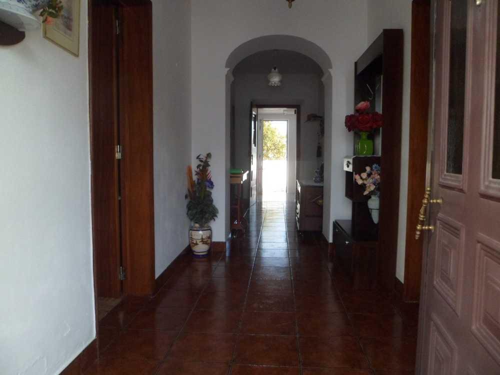 Vila de Frades Vidigueira maison photo 84891