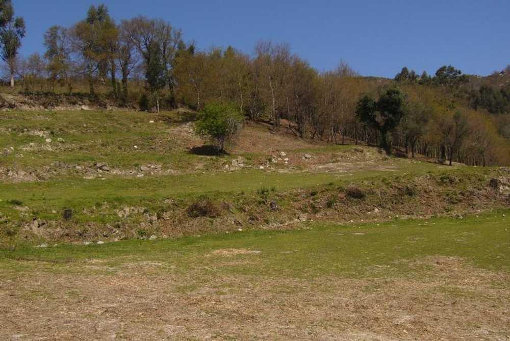 Veiga Vieira Do Minho terrain picture 58073