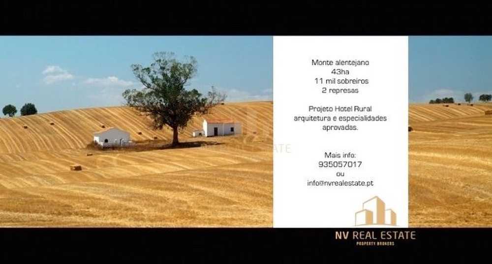 Comporta Alcácer Do Sal terreno foto #request.properties.id#