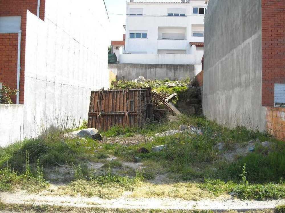 Sande Vila Nova Guimarães terrain picture 76364