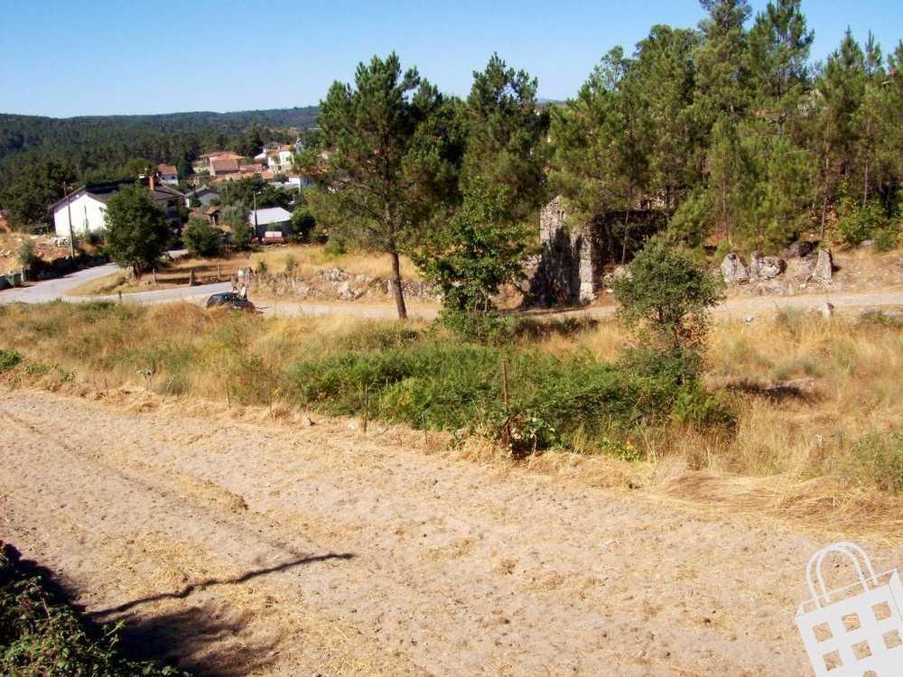Calde Viseu terrain picture 79905