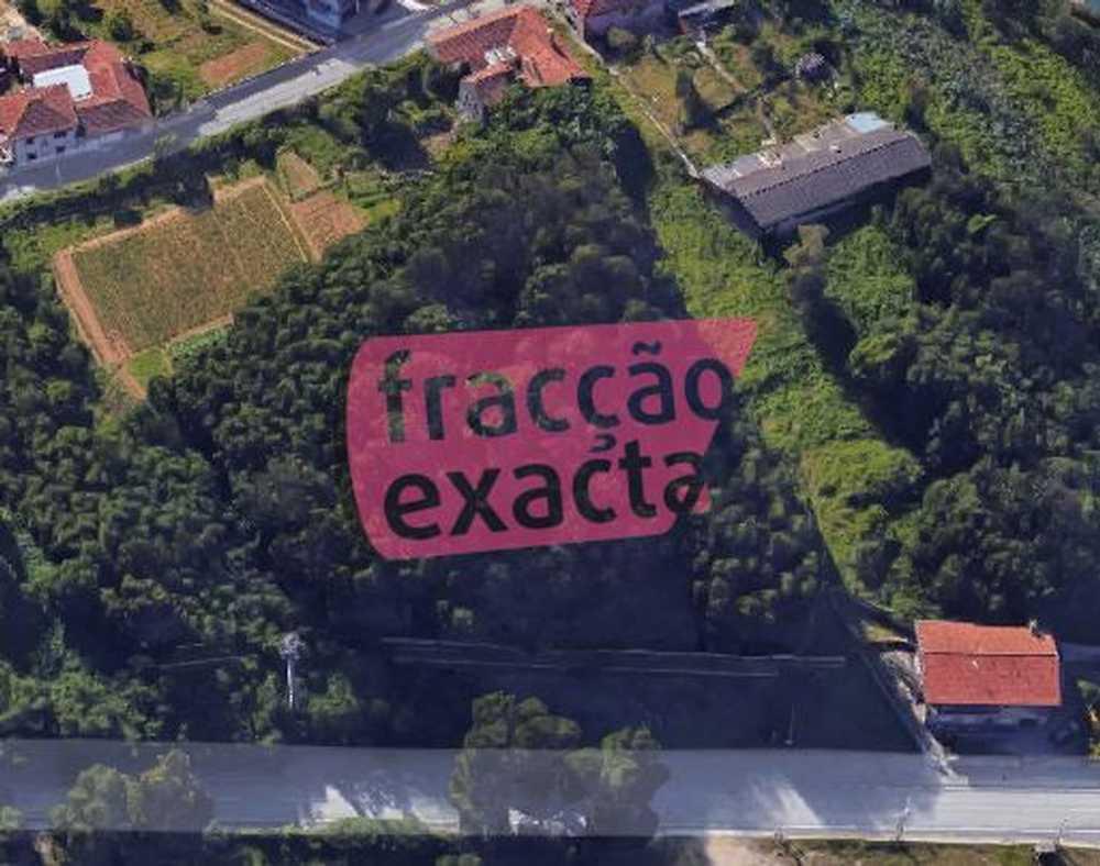 Oleiros Santa Maria Da Feira terrain picture 81309