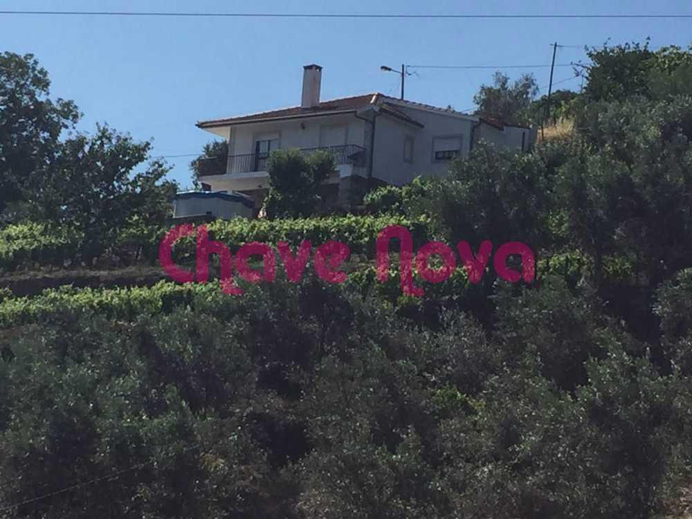 Torgueda Vila Real house picture 70732