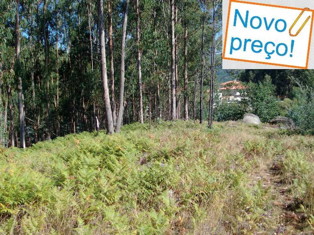 Mosteiro Pedrógão Grande terreno imagem 58019