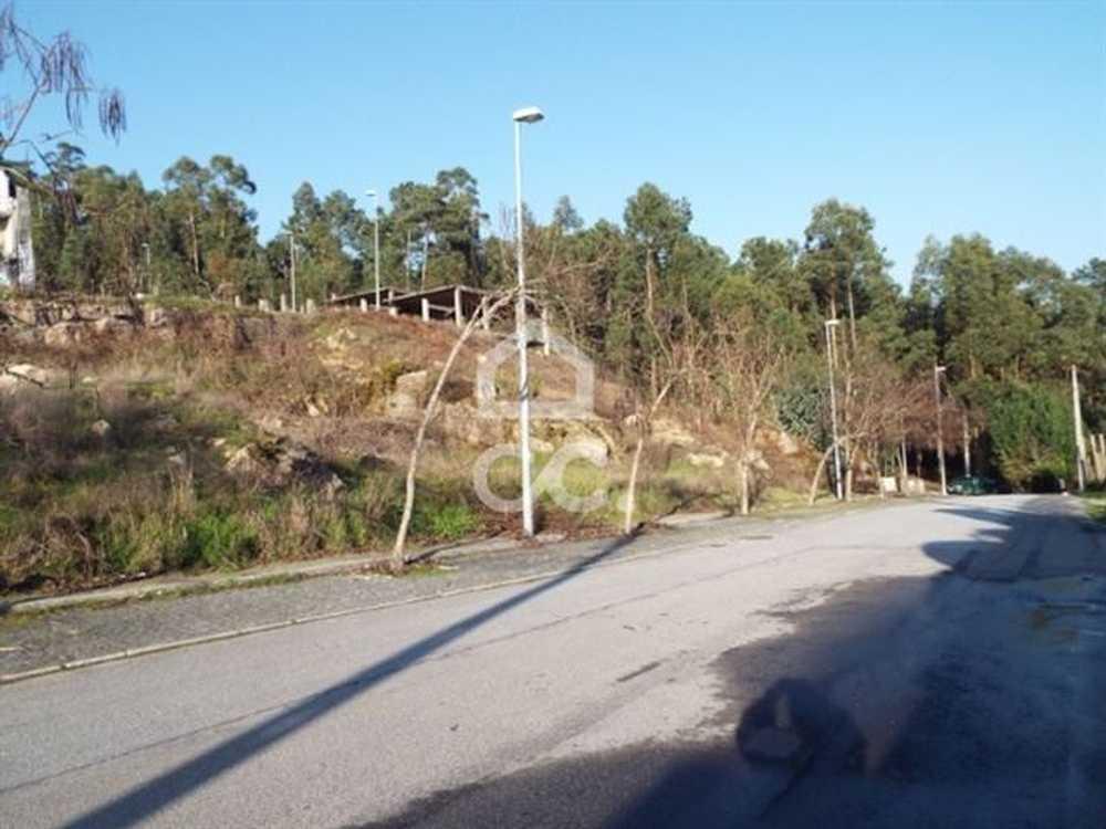 Sezures Vila Nova De Famalicão terrain picture 74953