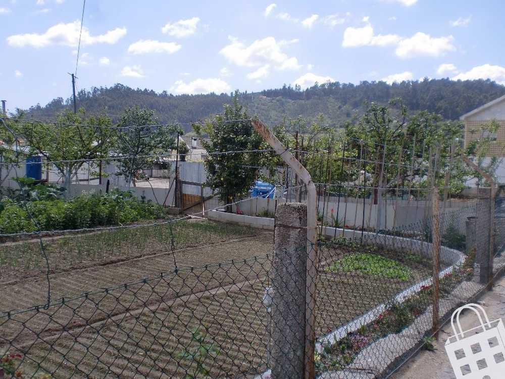 Sousela Lousada terrain picture 77825