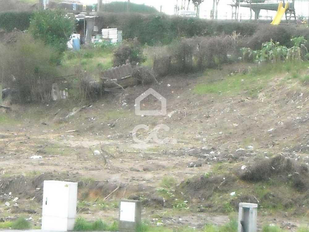 Guimarães Guimarães terrain picture 77485