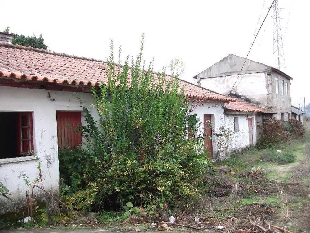 Gondar Guimarães house picture 57189