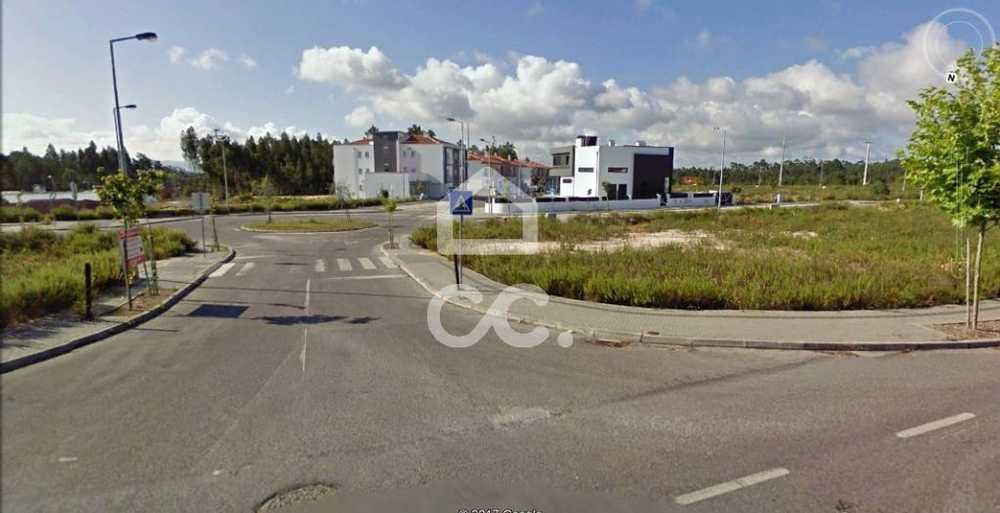 Ortigosa Leiria terrain picture 78303