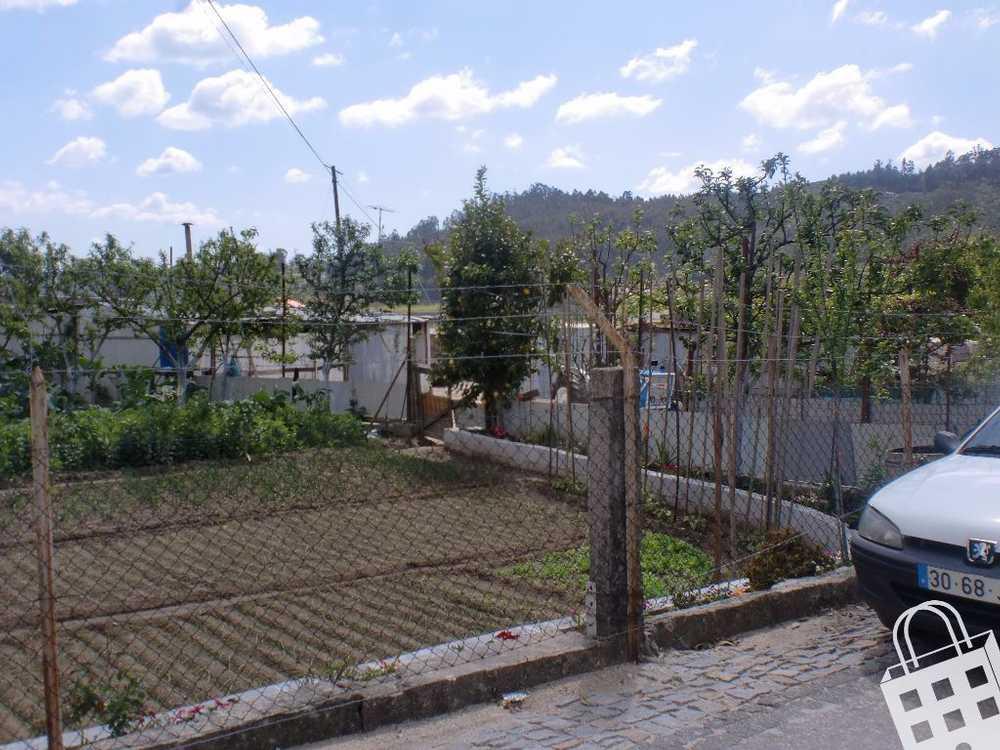 Sousela Lousada terrain picture 77826