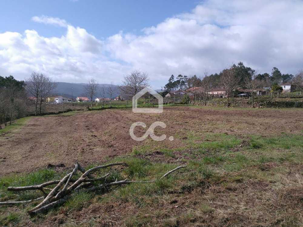 Mentrestido Vila Nova De Cerveira terrain picture 79535