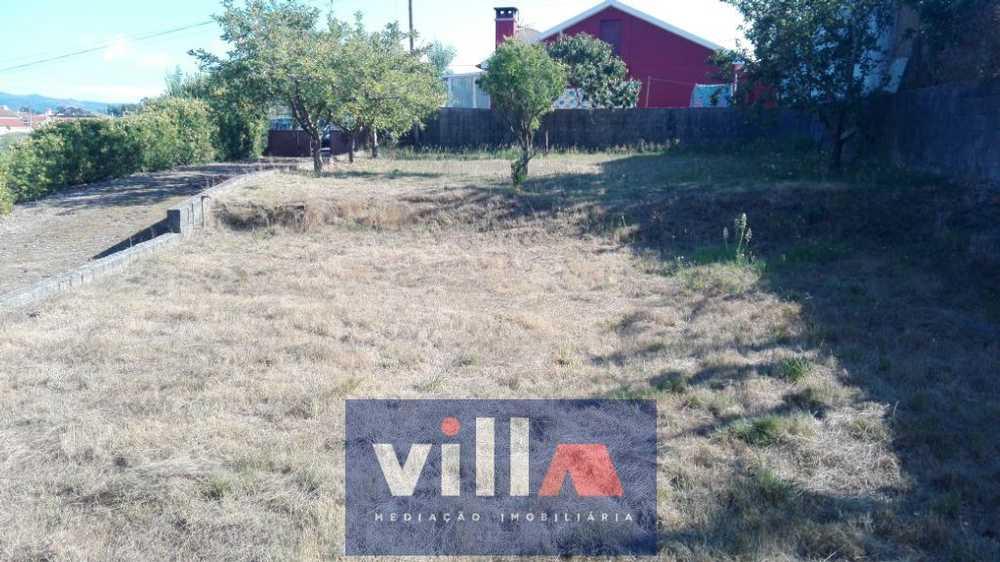Alvarães Viana Do Castelo terrain picture 67718