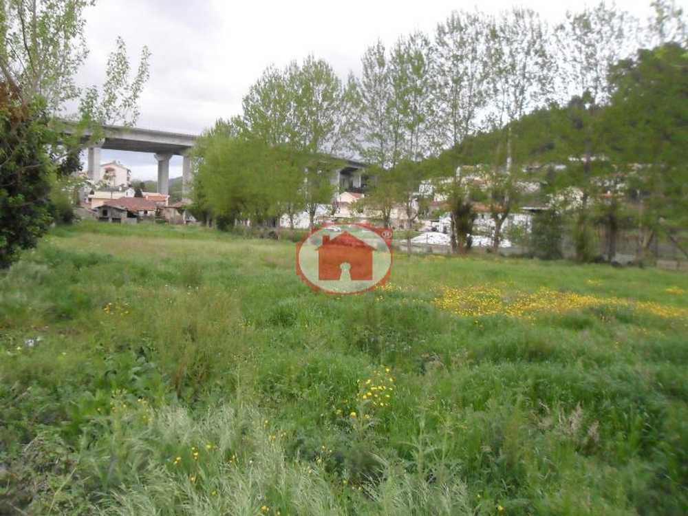 Nespereira Guimarães tomt photo 57409