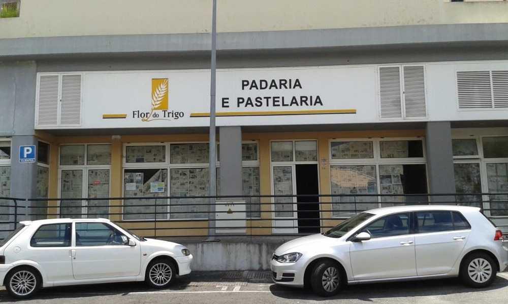 Campanário Ribeira Brava house picture 65270