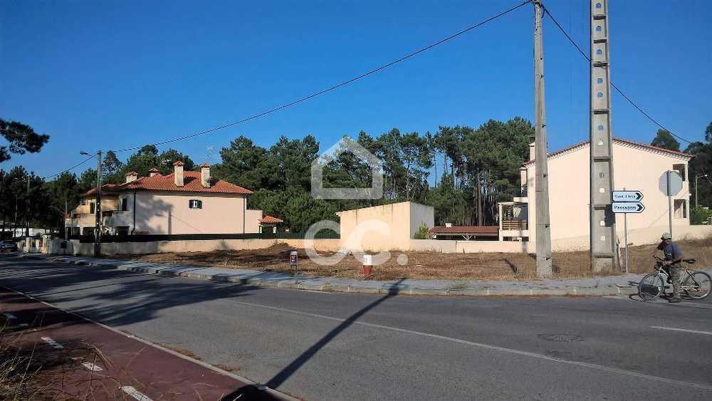 Vieira de Leiria Marinha Grande terrain picture 78259