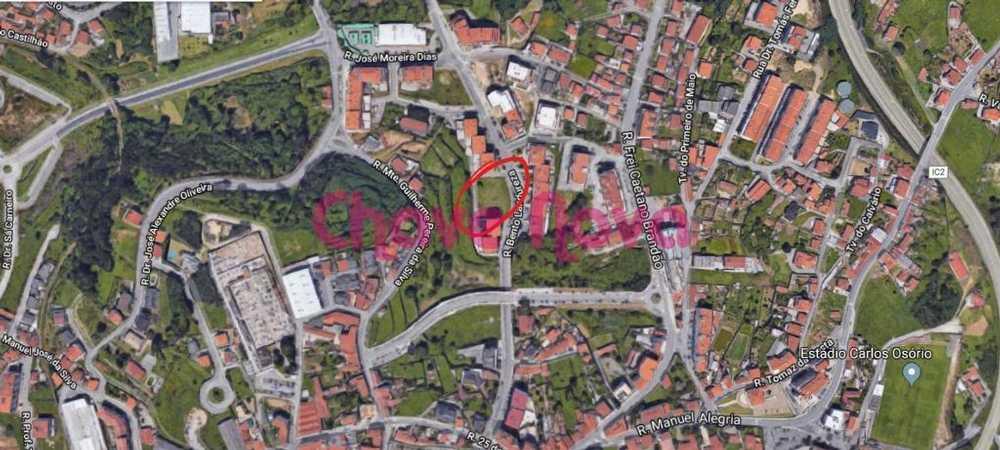 Ul Oliveira De Azeméis terrain picture 66821