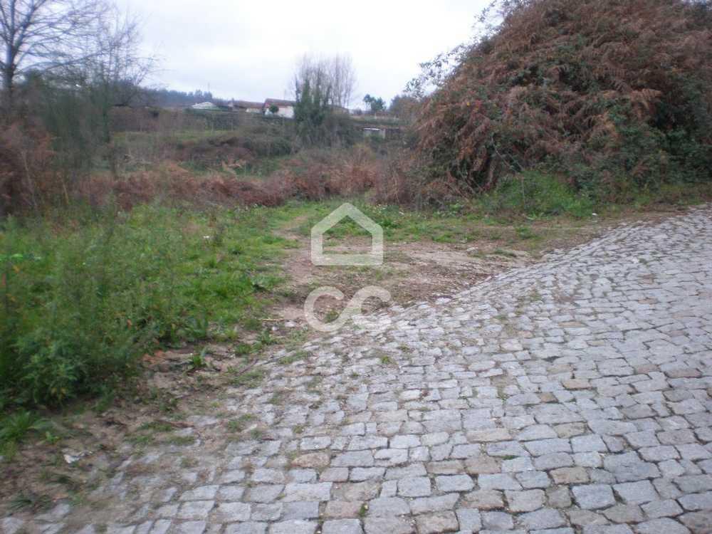 Lustosa Lousada terrain picture 77800