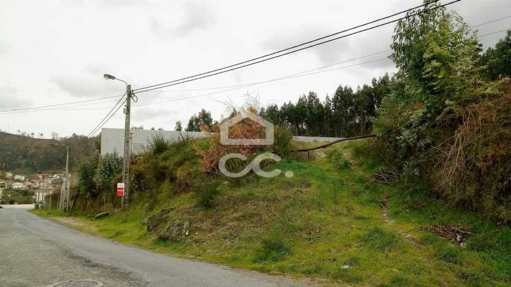 Vilarinho Santo Tirso terrain picture 77578