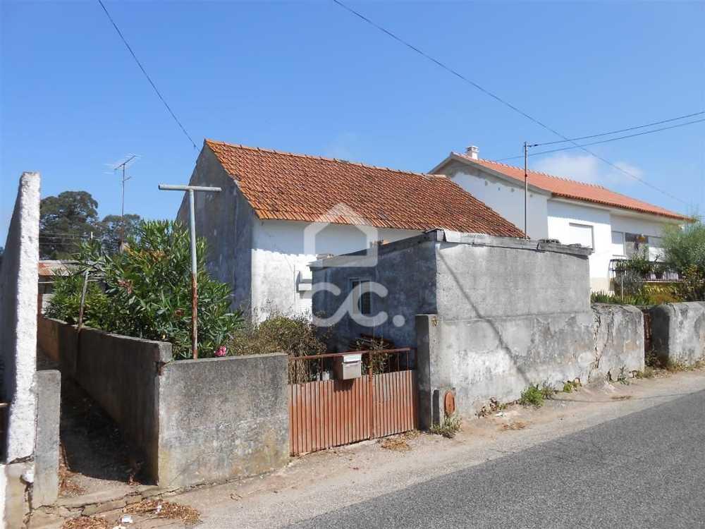 Maiorga Alcobaça house picture 71204