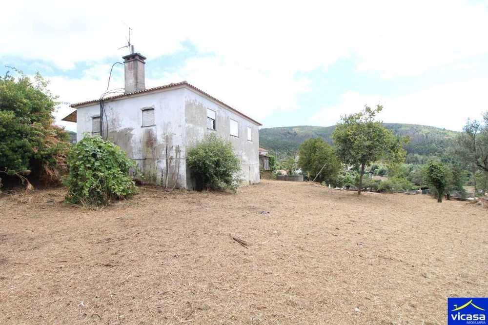 Argela Caminha house picture 58576
