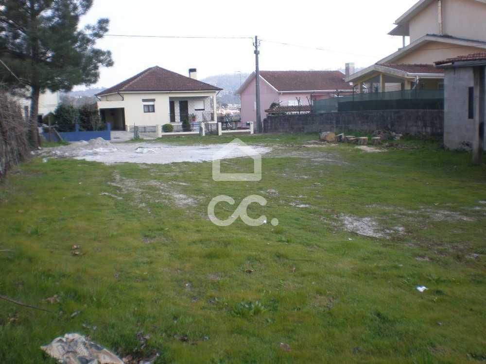 Meinedo Lousada terrain picture 77816