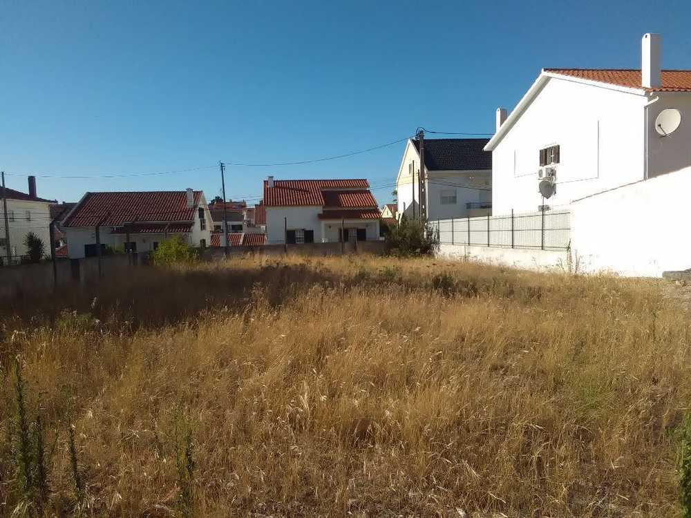 Quinta do Conde Sesimbra terrain picture 65507