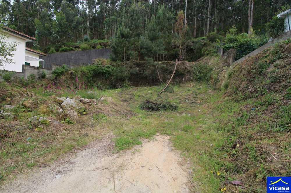 Nogueira Vila Nova De Cerveira terrain picture 58552