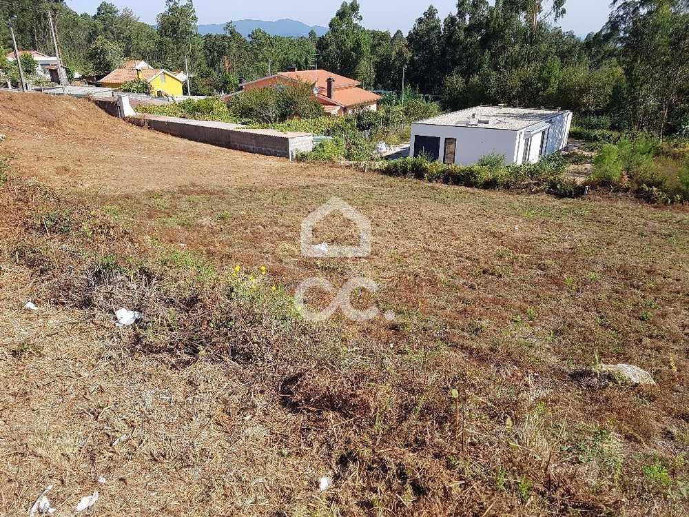 Nogueira Vila Nova De Cerveira terrain picture 79614