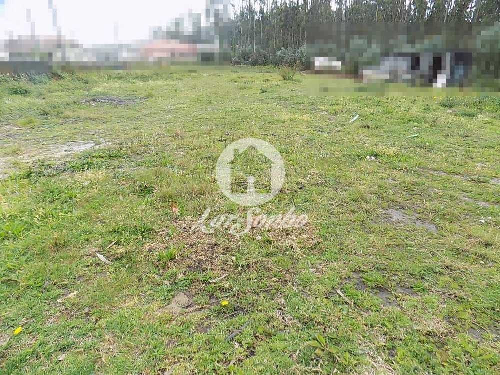 Parada Anadia terrain picture 57038