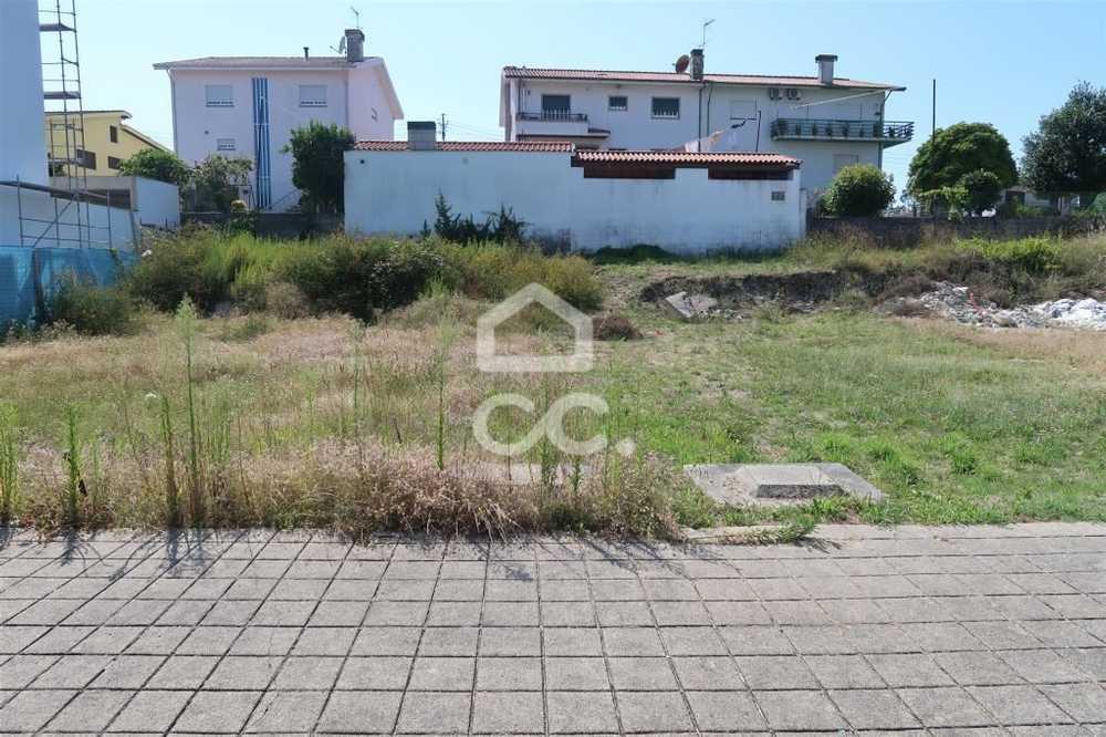 Cabanela Paredes De Coura terrain picture 77926