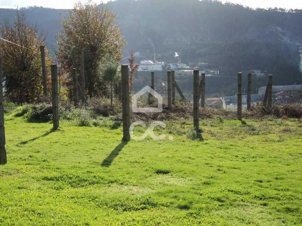 Moreira de Cónegos Guimarães terrain picture 77443