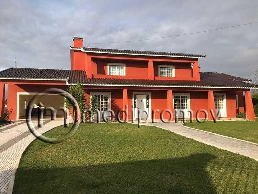 Covão do Lobo Vagos house picture 82485