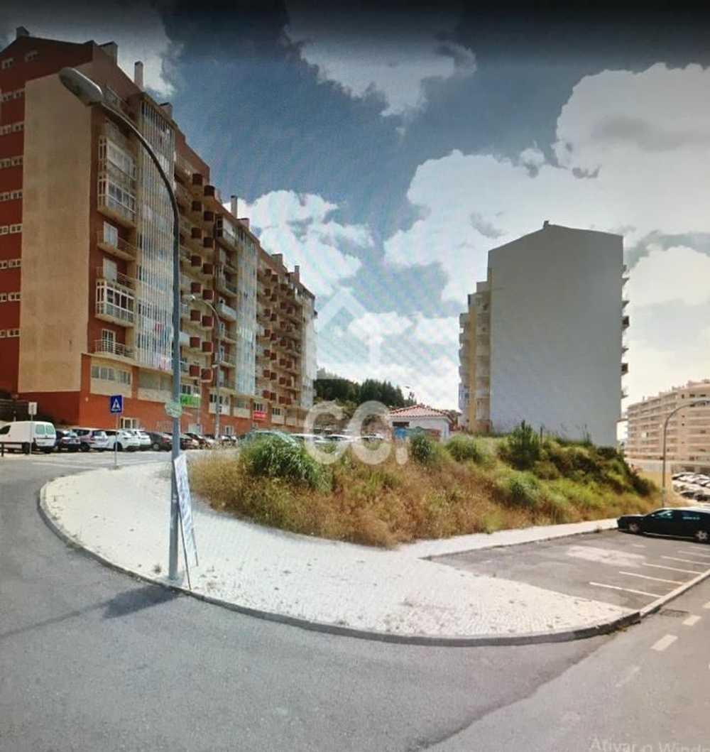 Rio de Mouro Sintra terrain picture 76985