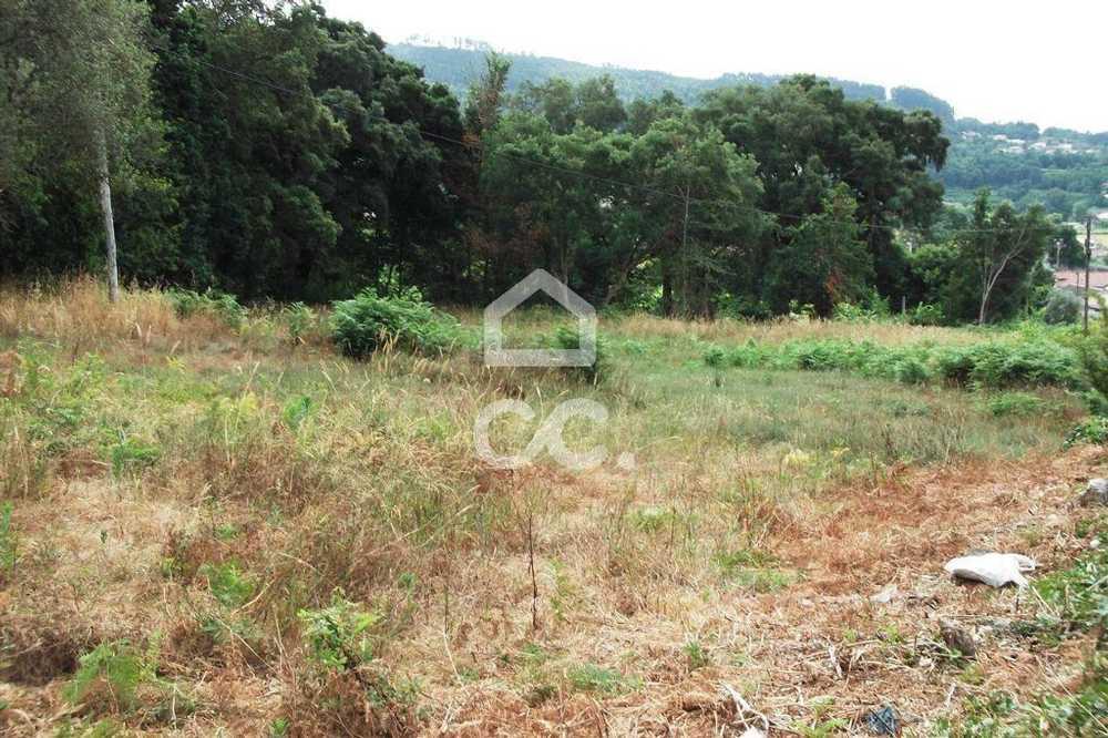 Guimarães Guimarães terrain picture 77426