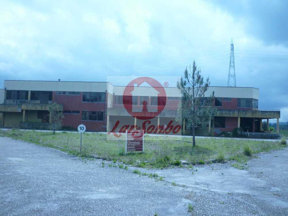 Marnota Paredes De Coura house picture 57112